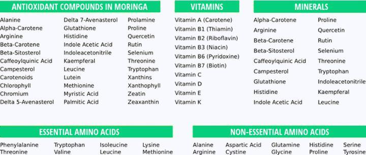 nutrient list for moringa oleifera including: antioxidant compounds, vitamins, minerals, essential amino acids and non-essential amino acids