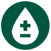 maintain normal blood sugar levels with moringa oleifera