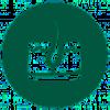 moringa oleifera protects and nourishes the skin