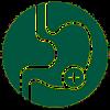 moringa oleifera supports normal digestive health